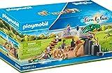 Playmobil Family Fun 70343 Löwen im Freigehege, Ab 4 Jahren