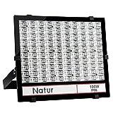Natur 100W LED Flutlicht Baustrahler, Außen Arbeitsleuchte Strahler,IP65 Garten Scheinwerfer Baustellen 10000LM LED-Strahler