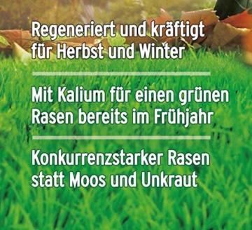 Substral Herbst Rasendünger 250 m² - 6,25 kg Sack